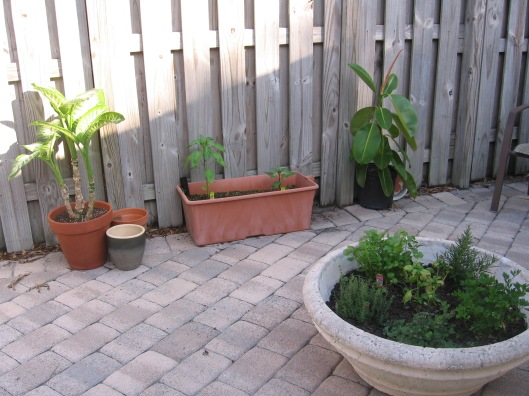 Garden Courtyard2