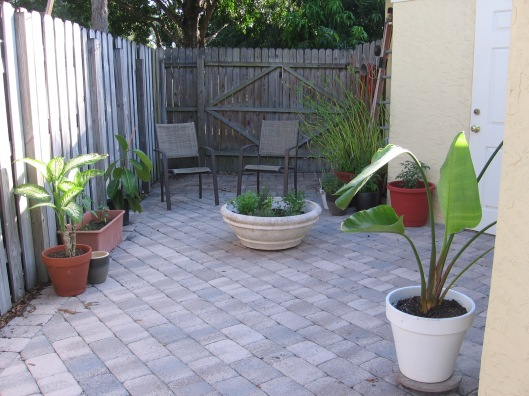 Garden Courtyard3