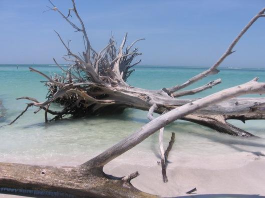 Whitney Beach (2)