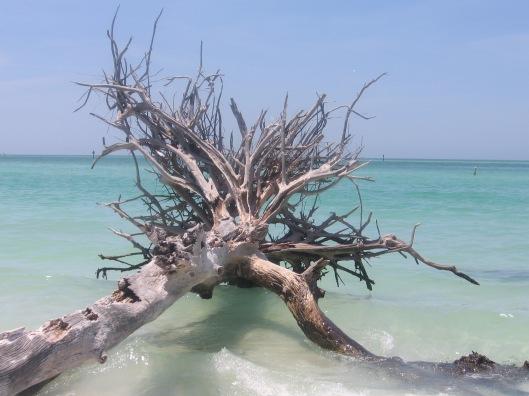 Whitney Beach 3