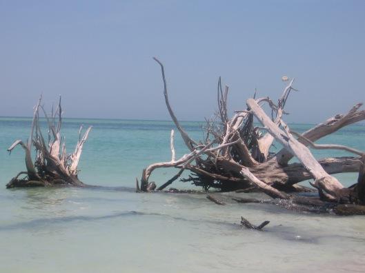 Whitney Beach 4