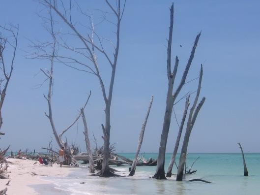 Whitney Beach 7
