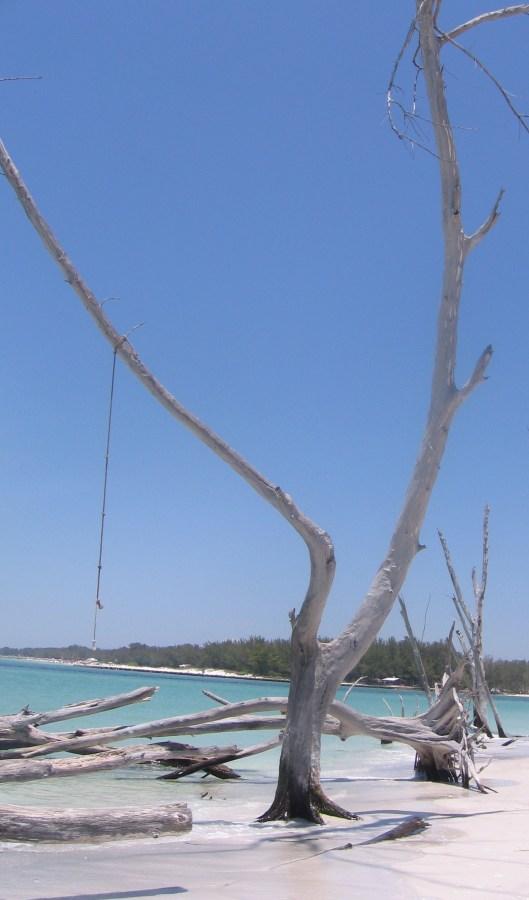Whitney Beach